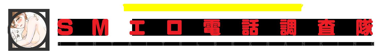 SMエロ電話覆面調査隊